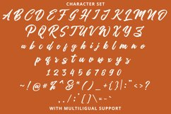 Artukge Script Product Image 5