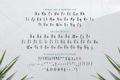 Web Font Asilmia Product Image 5