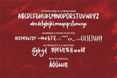 Atamelya - A Brush & Handwritten Font Product Image 6