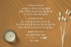 Web Font Auckish - Display Font Product Image 5