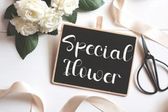 Autumn - Luxury and Modern Font Product Image 2