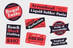 Aveghia Display Serif Font Product Image 5