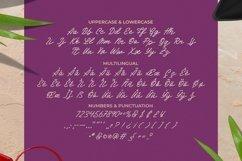 Web Font Avoris - Script Font Product Image 3