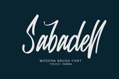Sabadell   Modern Brush Font Product Image 1