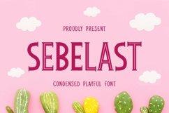 Web Font Sebelast Font Product Image 1