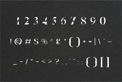 Elva | Modern Serif Product Image 7