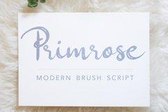 Primrose - A Cheerful Modern Handwritten Brush Script Product Image 1