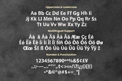 Web Font Jeslyn Font Product Image 5