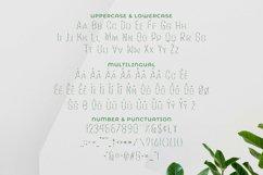 Parach Font Product Image 3