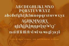 Audrey Mirages - Organic Serif Product Image 3