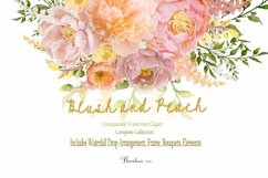 Watercolor Clipart Bundle Blush Pink and Peach Peony Product Image 5