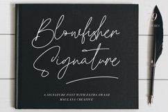 Blowfisher Signature Script Extra Swash Product Image 1