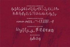 Web Font Meganti - A Modern Script Font Product Image 5