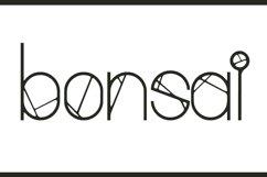 Greenvine Display Font Product Image 5