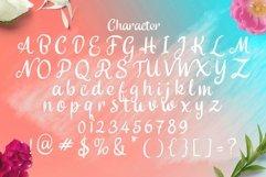 Web Font Delisya Script Product Image 2