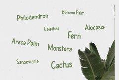 Leafy Plant Typeface Product Image 6
