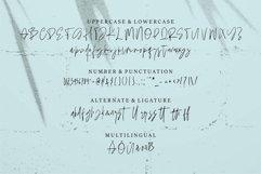 Web Font Roshbella - Beauty Handwritten Font Product Image 2