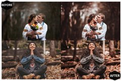 10 Rich And Moody Photoshop Actions And ACR Presets, fall Ps Product Image 5