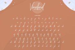 Vineland Product Image 2