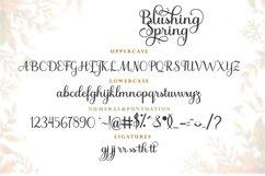 Blushing Spring Product Image 5
