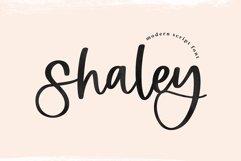 Shaley - A Modern Handwritten Script Font Product Image 1