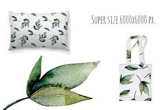 Green leaves Patterns Product Image 3