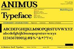 ANIMUS - Serif font family Product Image 4