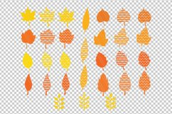Autumn Fall leaves svg / dxf cutting files Product Image 2