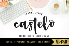 Castelo Script + 5 Branding Boards Product Image 1