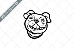Head of Boston Terrier Breed of Dog Smiling Mascot SVG Product Image 1