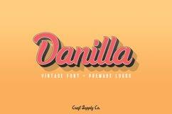 Danilla Font + Premade Logos Product Image 1