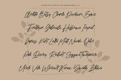 Blondey Rich Signature Script Font Product Image 5