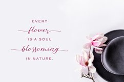 Blossomberry Script Font Product Image 2