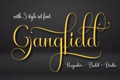 Gangfield Product Image 6