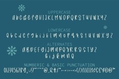 Farmhouse Christmas - A handwritten mixed case font Product Image 2