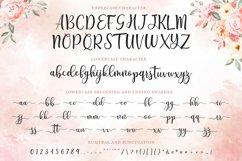 Modern Script - Breyhana Font Product Image 6