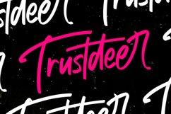Trustdeer Handbrush Font Product Image 1