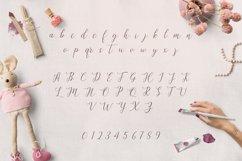Web Font Allison Script Product Image 2