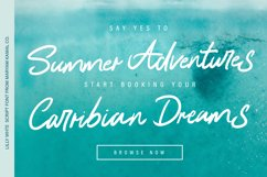 Lilly White Script Font Product Image 5