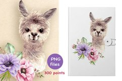 baby alpaca with a bouquet of flowers Product Image 2