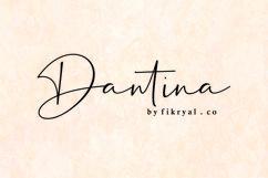 Dantina//handwritten font Product Image 1