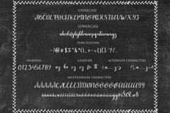 Web Font Dahlia Font Product Image 4