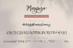 Mariposa Script Calligraphy Product Image 3