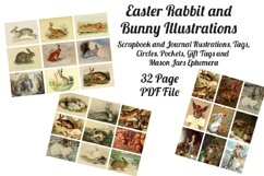 Easter Bunny and Rabbit Vintage Illustrations 1 PDF Product Image 1