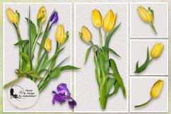 """Kit """"Colours of spring"""" by NatalinkaV design Product Image 3"""