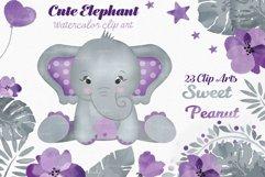 Purple elephant watercolor clip art bundle PNG, floral crown Product Image 1