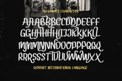 Gendar Rebus - A Cute Display Font Product Image 5