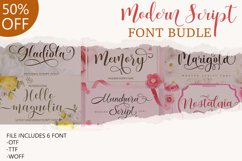 Modern Script Font Budle Product Image 1
