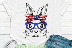 4th of July svg, Bunny svg, Files for Cricut, Cut File, dxf Product Image 1
