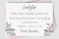 Candylife Modern Monoline Calligraphy Font Product Image 6